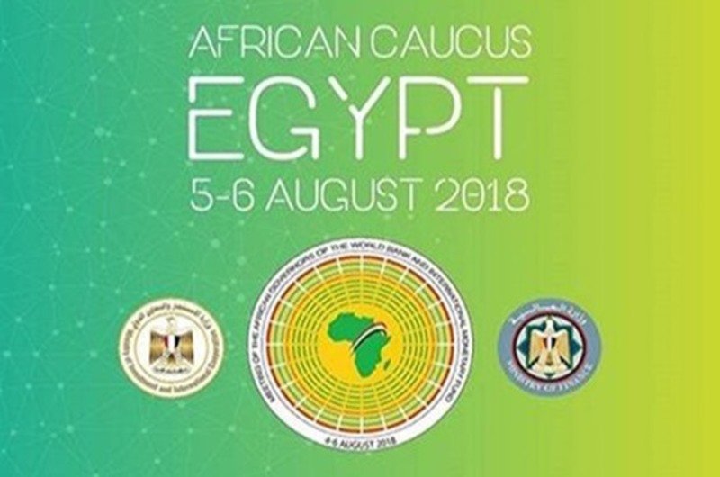 AFRICAN CAUCUS ( CENTERL BANK OF EGYPT )